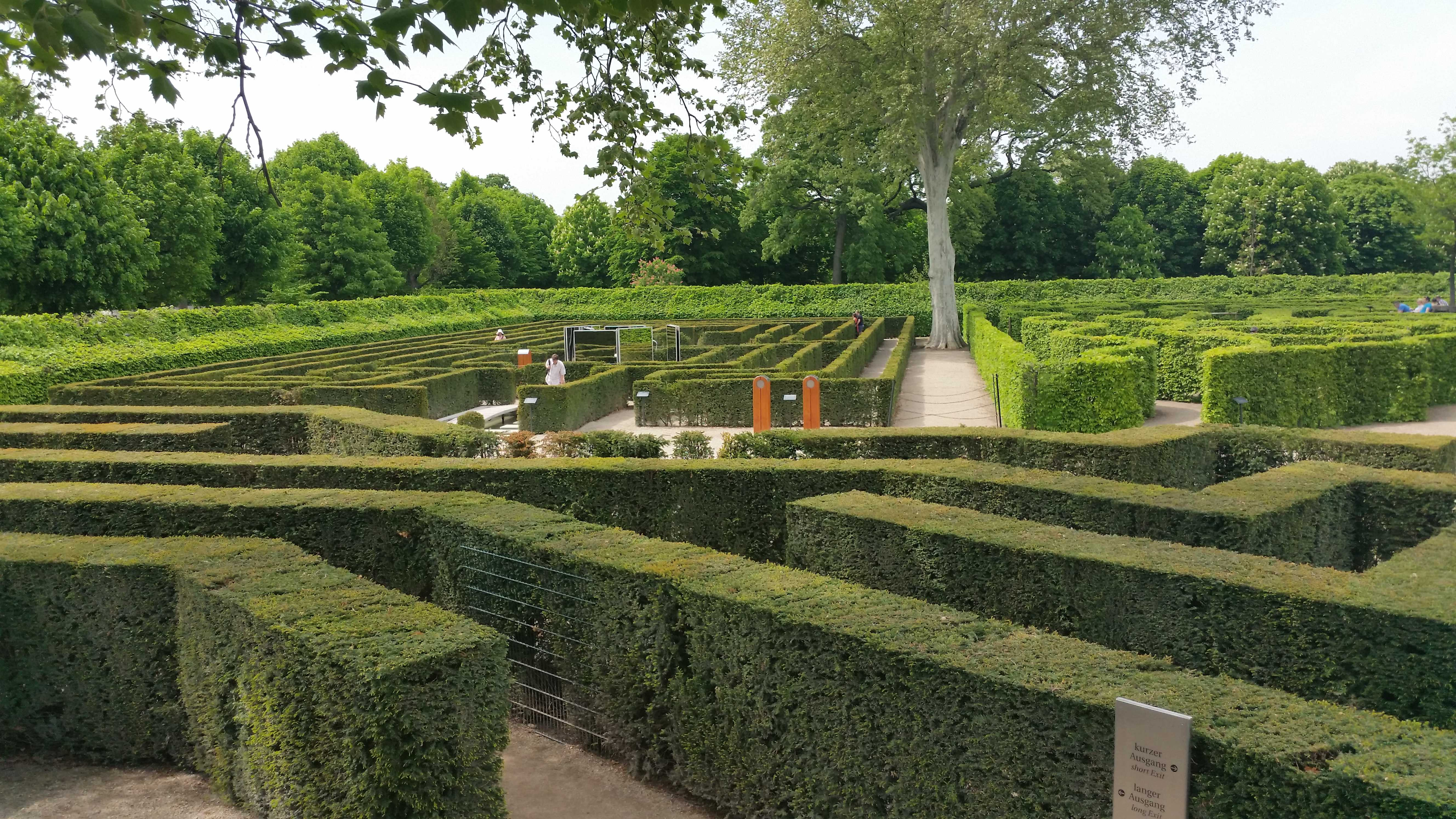 picture_of_the_mazes